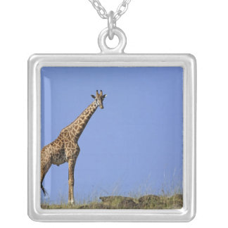 Giraffe, on ridge against blue sky, Giraffa Custom Necklace