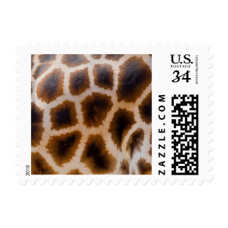 Giraffe Patches Spotted Skin Texture Template Postage Stamp