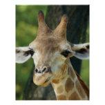 Giraffe Personalized Flyer