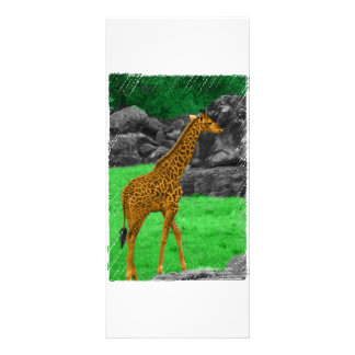 Giraffe photo colorized orange and green rack card