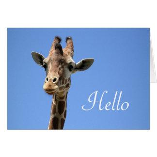 Giraffe Photo Hello Blank Note Card
