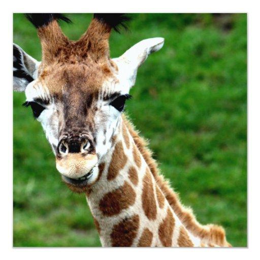 Giraffe Photo Invitation