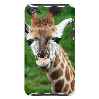 Giraffe Photo iTouch Case Barely There iPod Covers