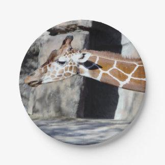 Giraffe Photo Paper Plate
