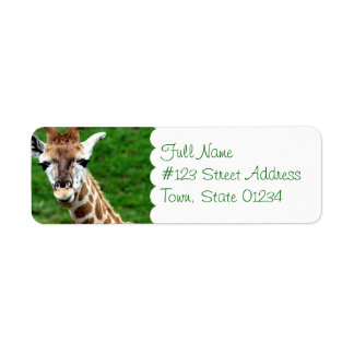 Giraffe Photo Return Address Mailing Label