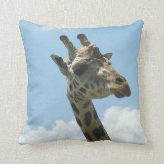 Giraffe Pillow Animal Kingdom Orlando Florida