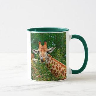 Giraffe Portrait, Kruger National Park Mug