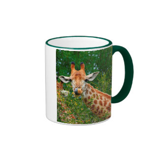 Giraffe Portrait, Kruger National Park Ringer Coffee Mug