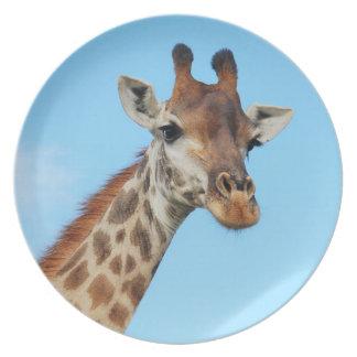 Giraffe portrait plate