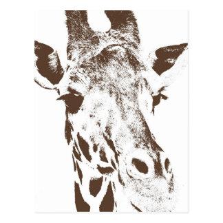 Giraffe Post Cards