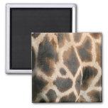 Giraffe Print Pattern Magnet Refrigerator Magnets