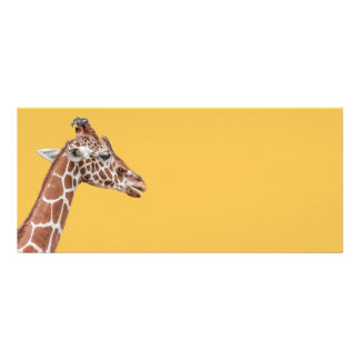Giraffe profile rack card template