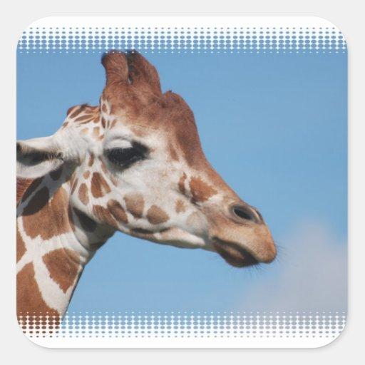 Giraffe Profile Stickers