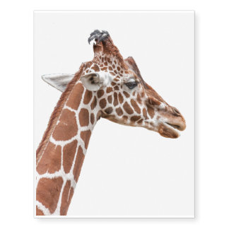 Giraffe profile temporary tattoos