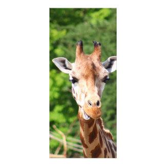 Giraffe Custom Rack Cards