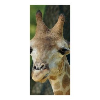 Giraffe Custom Rack Card
