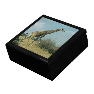 Giraffe Running Gift Box