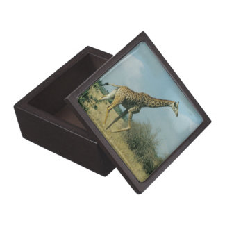Giraffe Running Keepsake Box