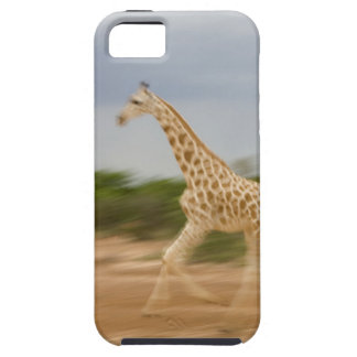 Giraffe running, side view (blurred motion) iPhone 5 cover
