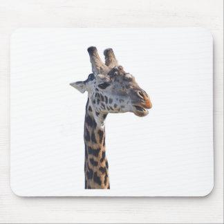 Giraffe Says Hello Tom Wurl Mouse Pad