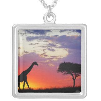 Giraffe silhouetted at sunrise, Giraffa Silver Plated Necklace