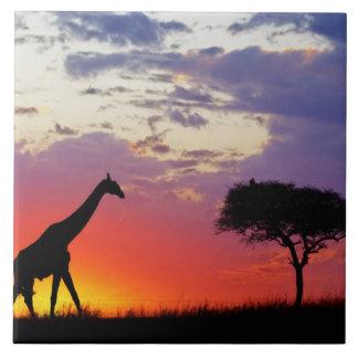 Giraffe silhouetted at sunrise, Giraffa Ceramic Tiles