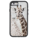 Giraffe Sketch iPhone 6 Case
