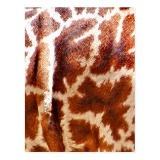 Giraffe Skin_ Postcard