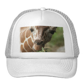 Giraffe Snack Baseball Cap Trucker Hat