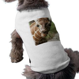 Giraffe Snack Dog Shirt