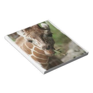 Giraffe Snack Notepad