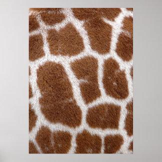 Giraffe Spots Poster