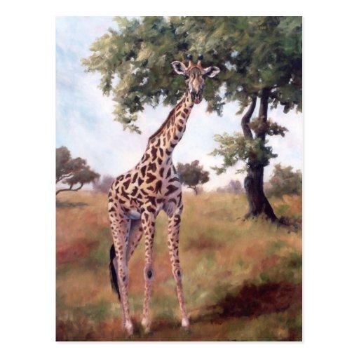 Giraffe Standing Tall Postcard