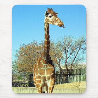 GIRAFFE STICKING IT'S TONGUE OUT MOUSE PAD