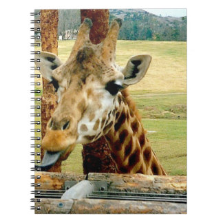 Giraffe Sticking It's Tongue Out Notebook