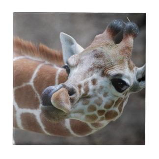 Giraffe Tongue Tile