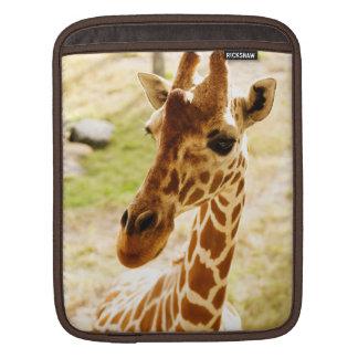 Giraffe Up Close Sleeves For iPads
