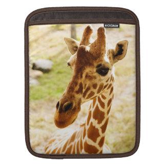 Giraffe Up Close iPad Sleeves