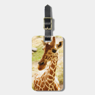 Giraffe Up Close Luggage Tag