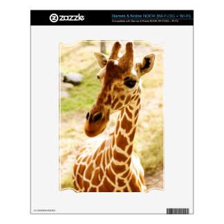 Giraffe Up Close Decal For NOOK