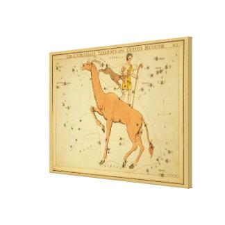 Giraffe - Vintage Astronomical Star Chart Image Canvas Print