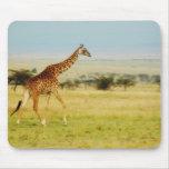 Giraffe walking Masai Mara Plains Kenya mousepad
