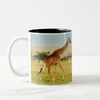 Giraffe walking Masai Mara Plains, Kenya mug
