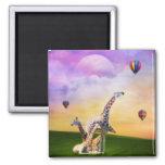 Giraffe Watching Balloons 2 Inch Square Magnet