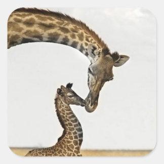 Giraffe with a Baby Sticker