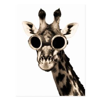Giraffe With Steampunk Sunglasses Goggles Postcard