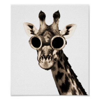 Giraffe Wearing Sunglasses  giraffe posters zazzle