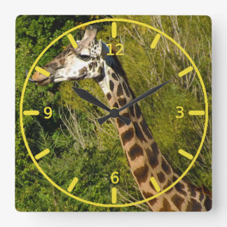 Giraffe with Tongue Sticking Out Curled Up Clock