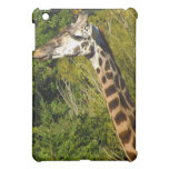 Giraffe with Tongue Sticking Out Curled Up iPad Mini Cases