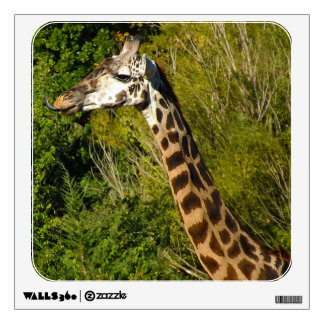 Giraffe with Tongue Sticking Out Curled Up Wall Sticker
